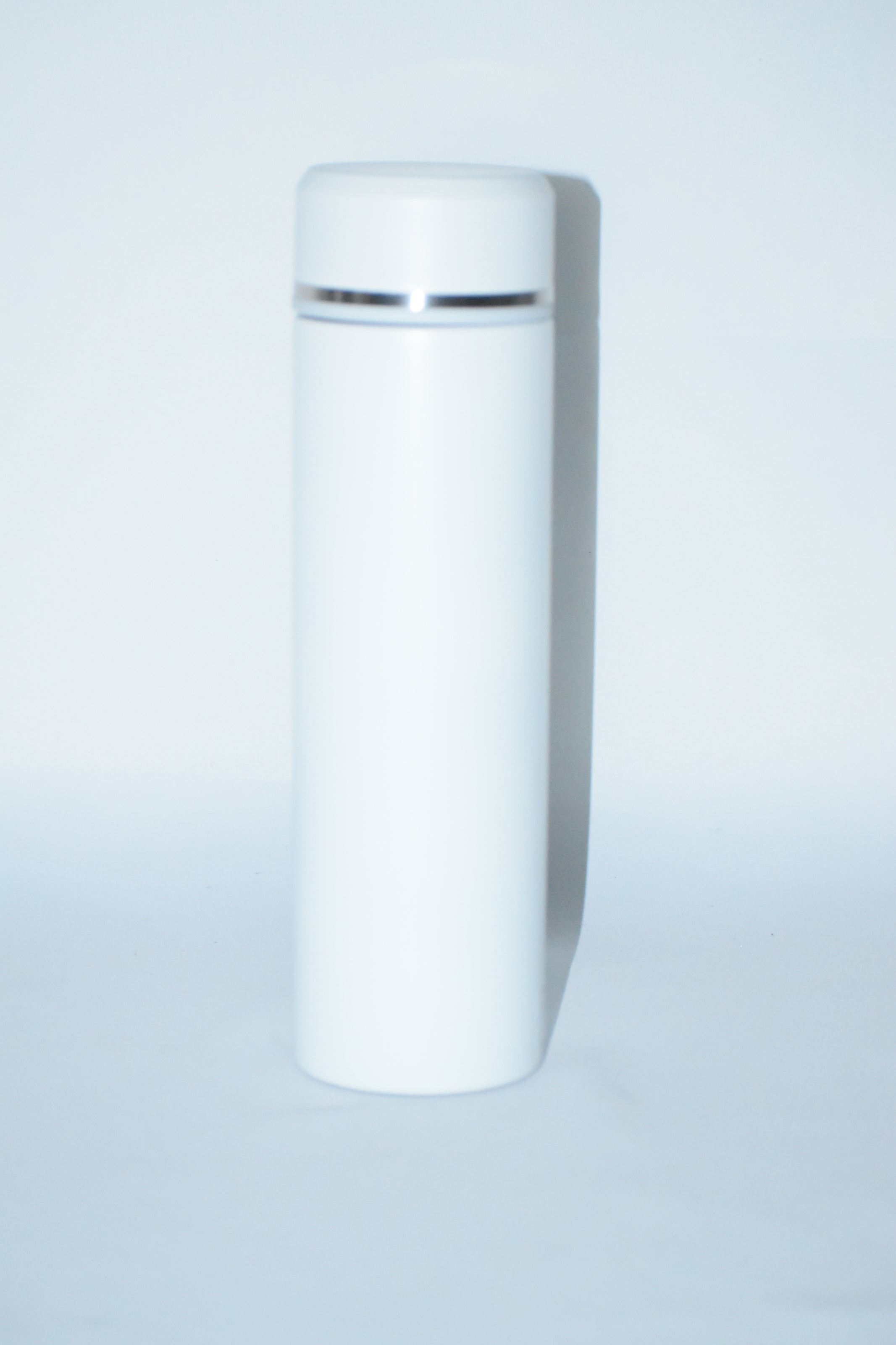 Premium Stainless Steel Metallic Bottle With Filter