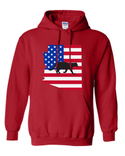 Load image into Gallery viewer, Pullover Hooded Sweatshirt Arizona Red Mountain Lion Vibrant Design High Quality Tight Knit Ring Spun Low Maintenance Cotton Printed With The Newest Available Color Transfer Technology