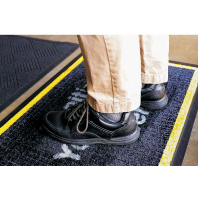 Disinfectant Shoe Mat - Qlevo - Clever Living