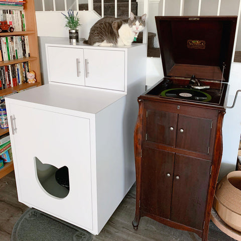 All-in-one Cabinet for Automatic Litter Box | Litter Robot Furniture | Storage Cabinet