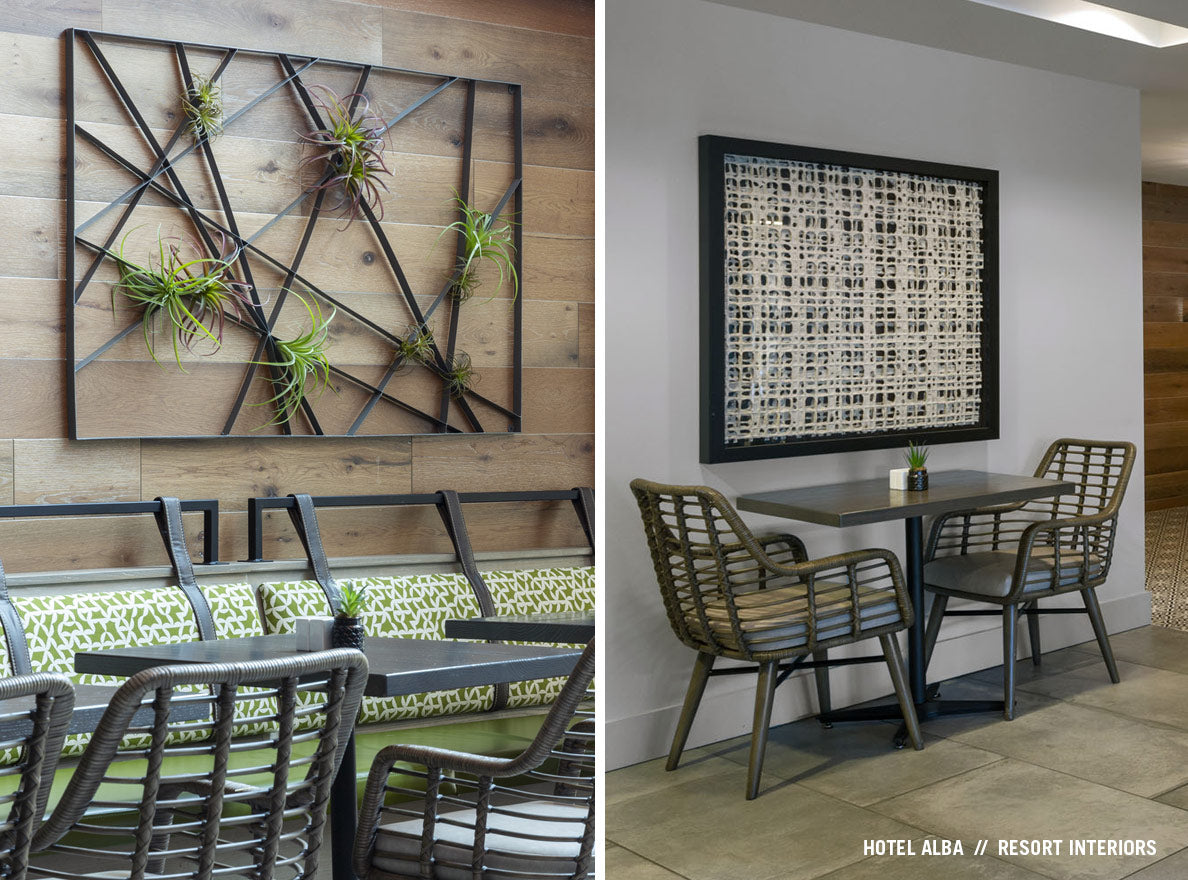 Intersect Wall Art with Tillandsia and framed handmade paper art at Hotel Alba in Tampa Florida.