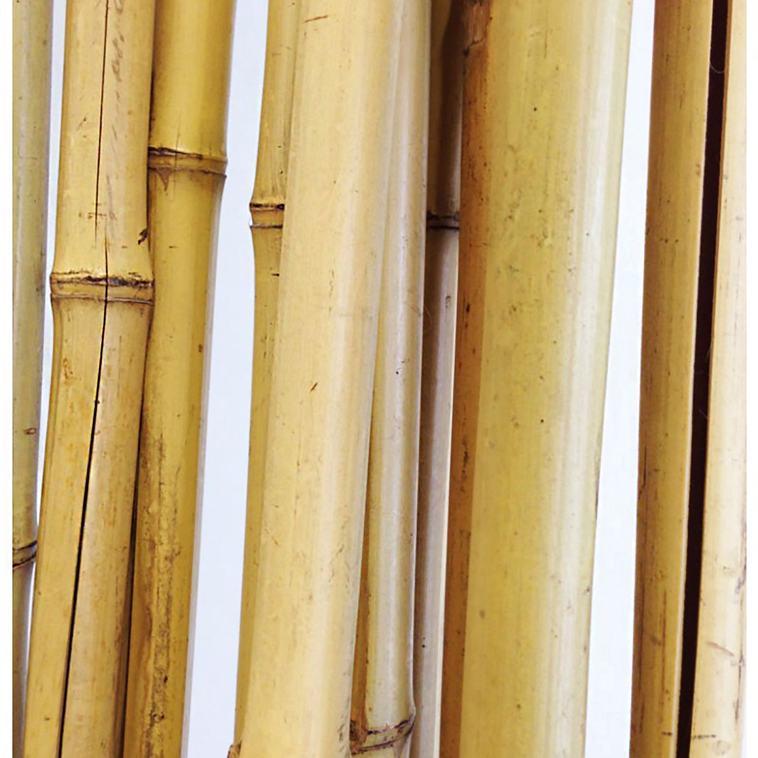 "Bamboo Pole, 1.25""D, Natural, Set/ 3"