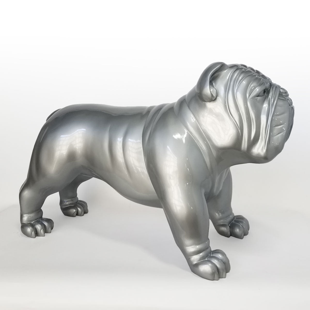 Silver Bulldog side view facing right.