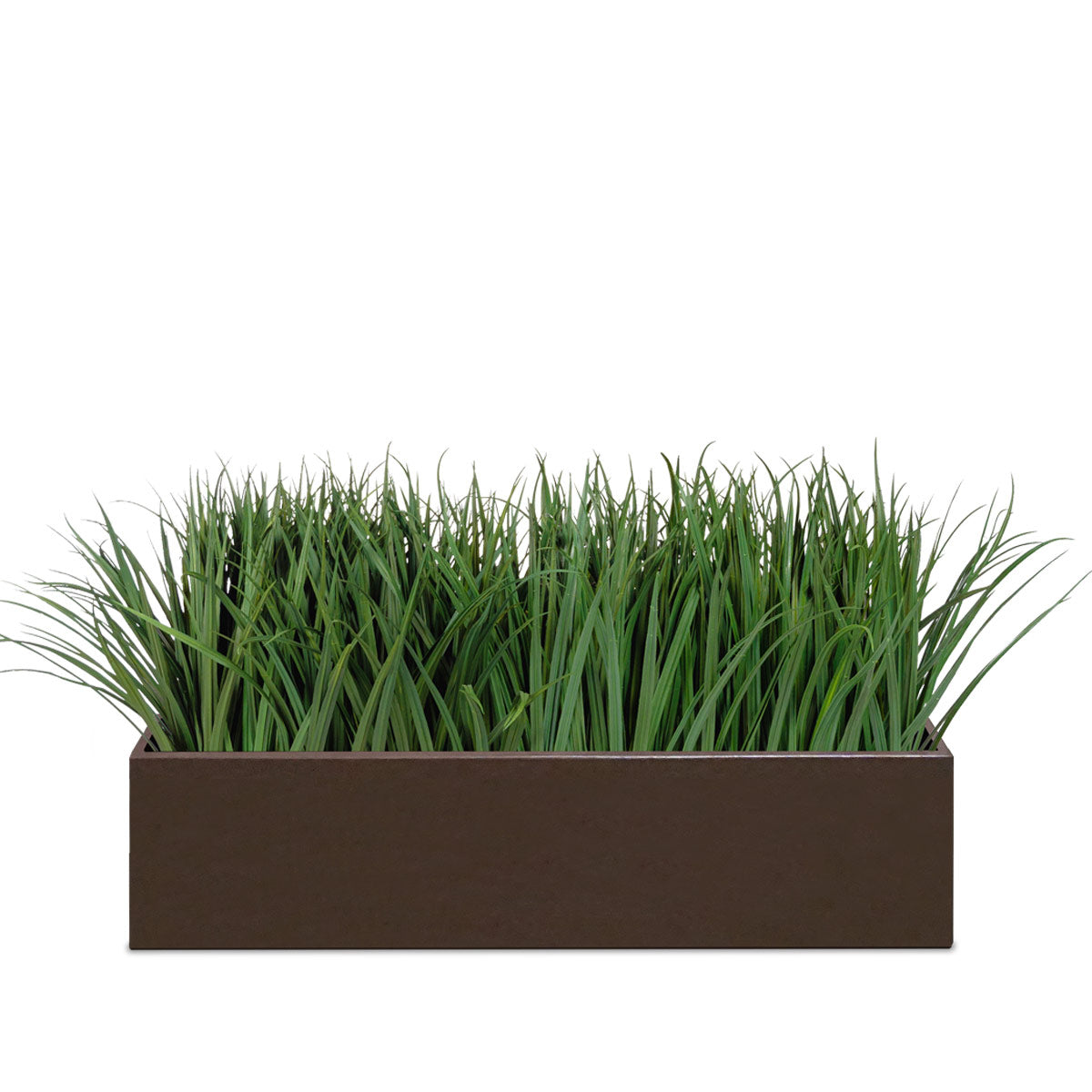 Grass: Liriope Planter for Base of Movable Partition Wall, Bronze Black