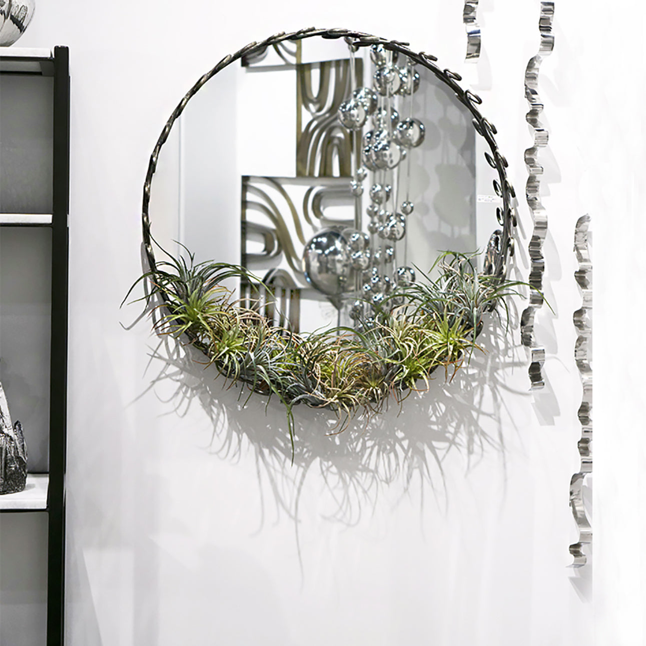 Kerl Mirror with Air Plants