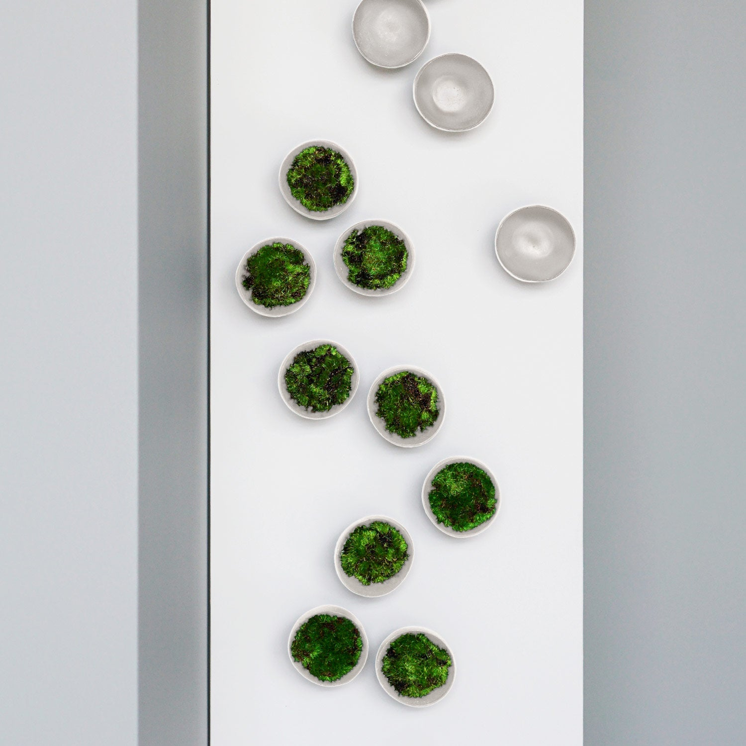Green Wall, Moss w/ Wall Play™, Seed Cream