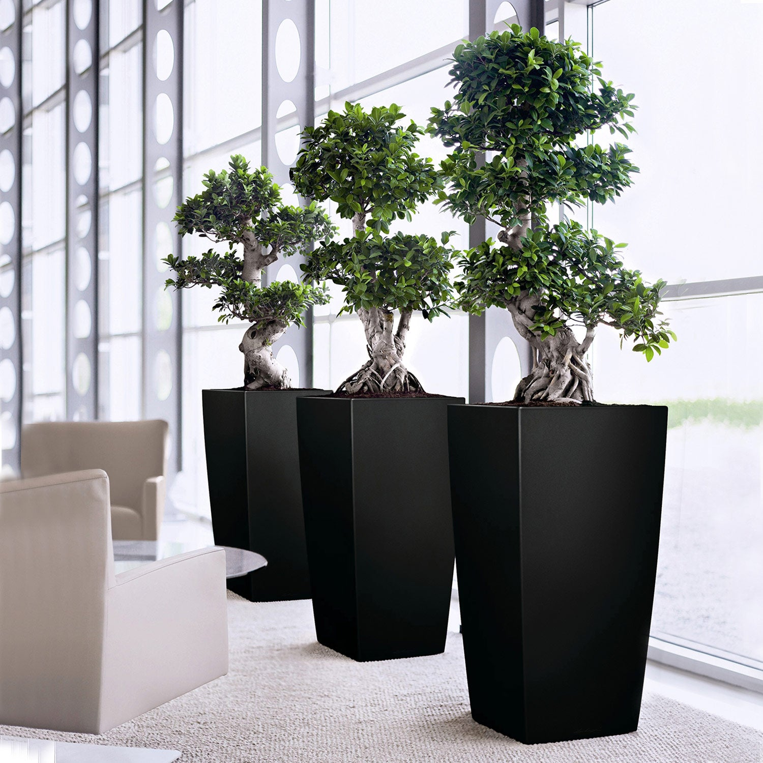 "Plastic: Planter Square Tall Black Gloss, 37""H"