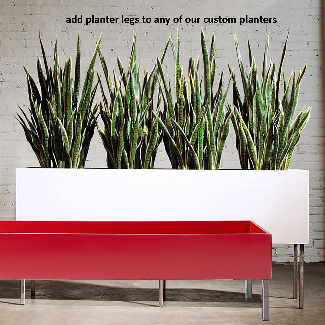 "Stainless Bamboo in Rectangle Planter 48""L"