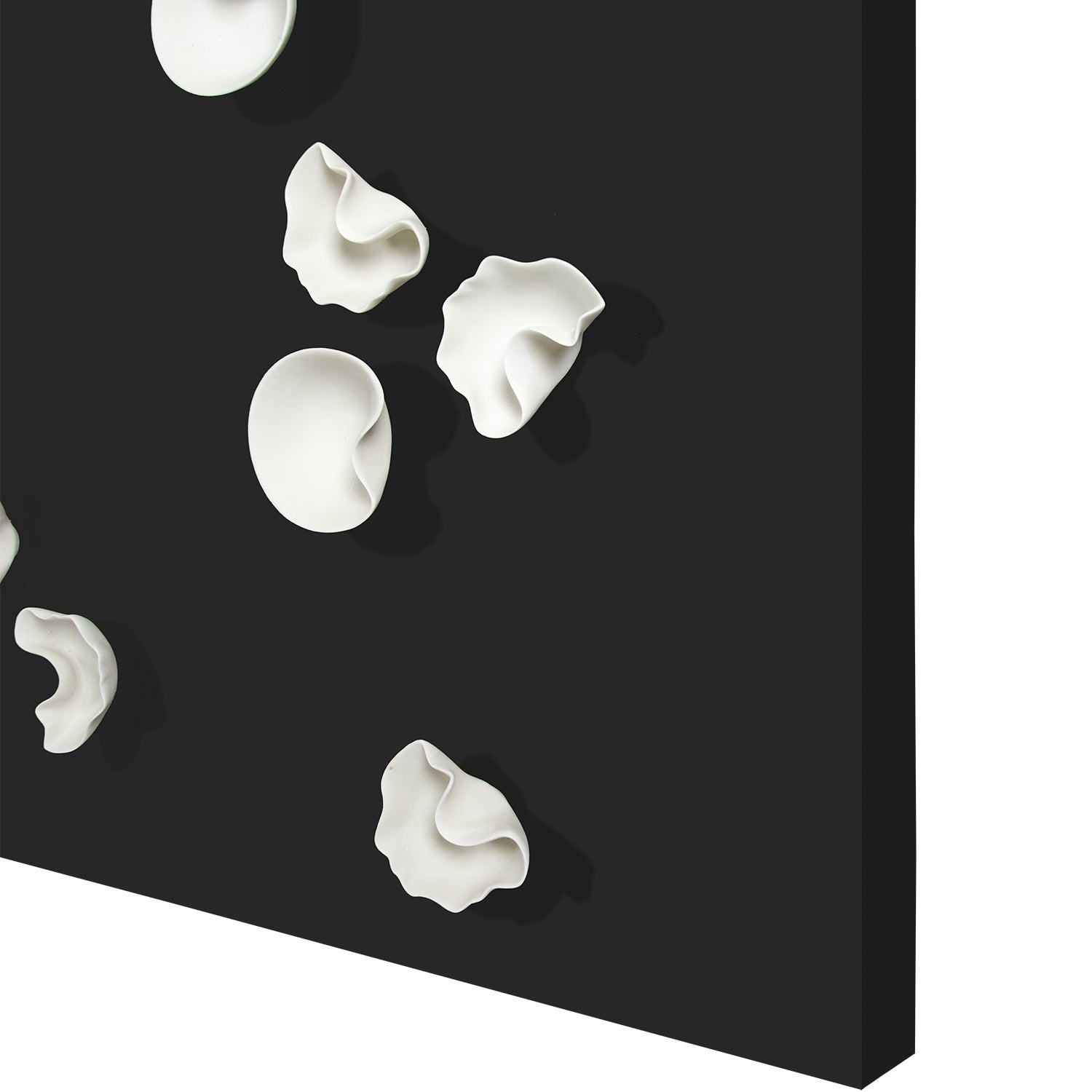 Wall Play™ Substrate Black w/ Organic Cream