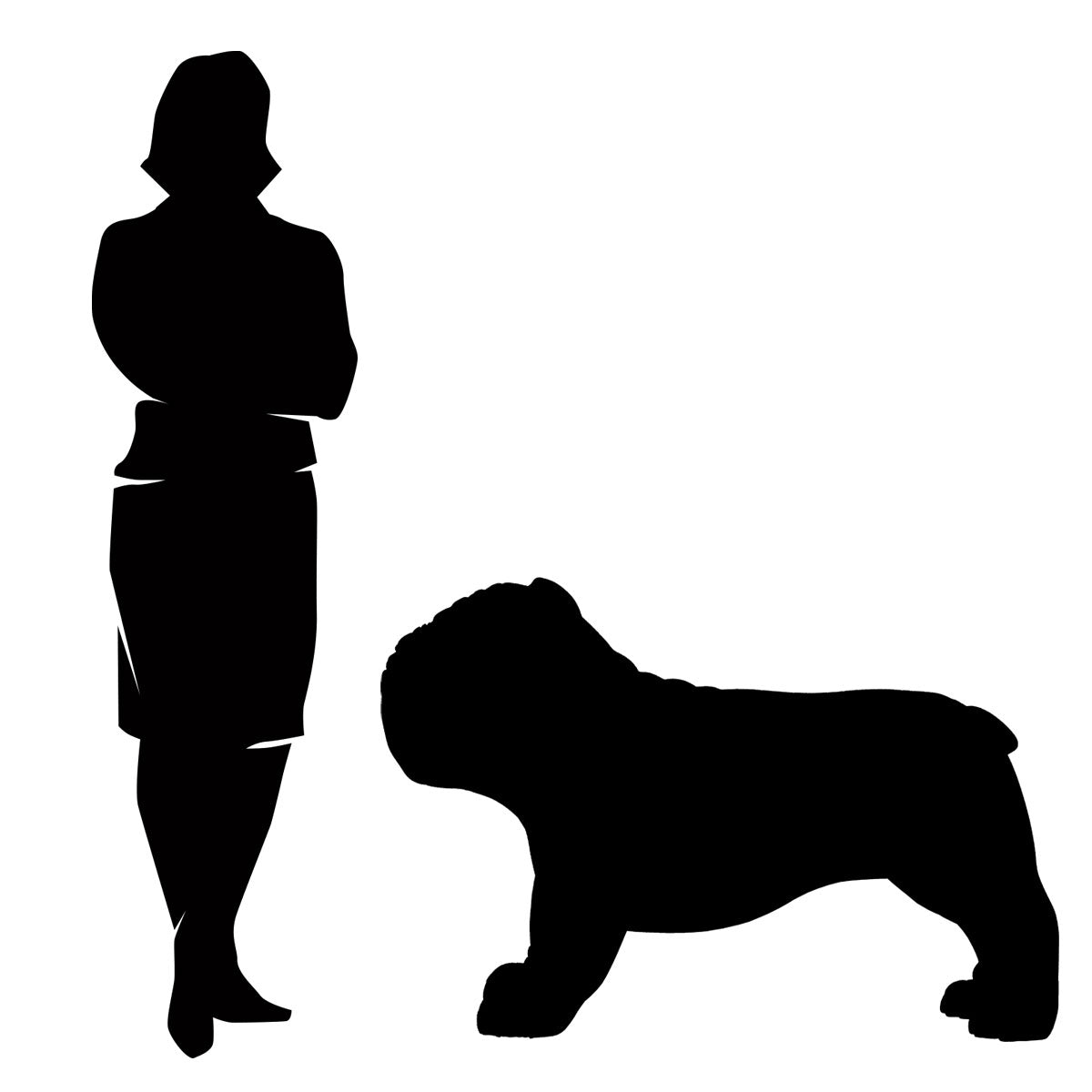 Bulldog size comparison diagram