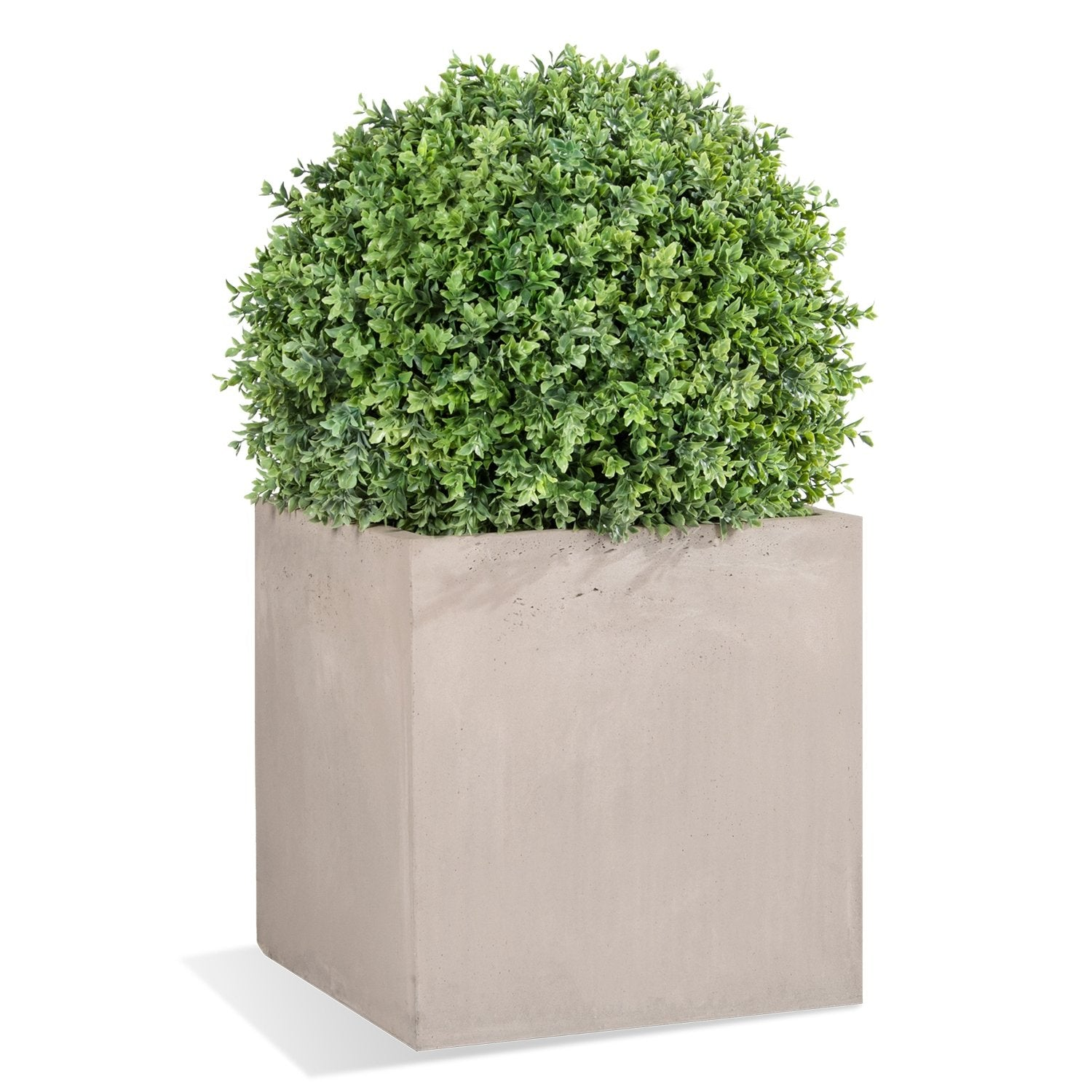 "Boxwood Ball, 30""D"