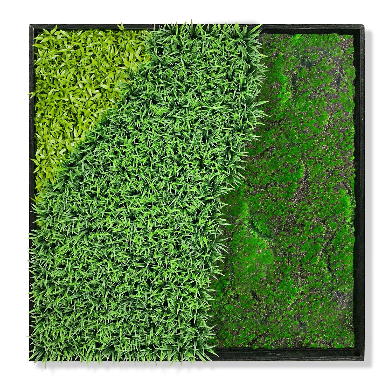 Green Wall, 'Wave Texture 2'