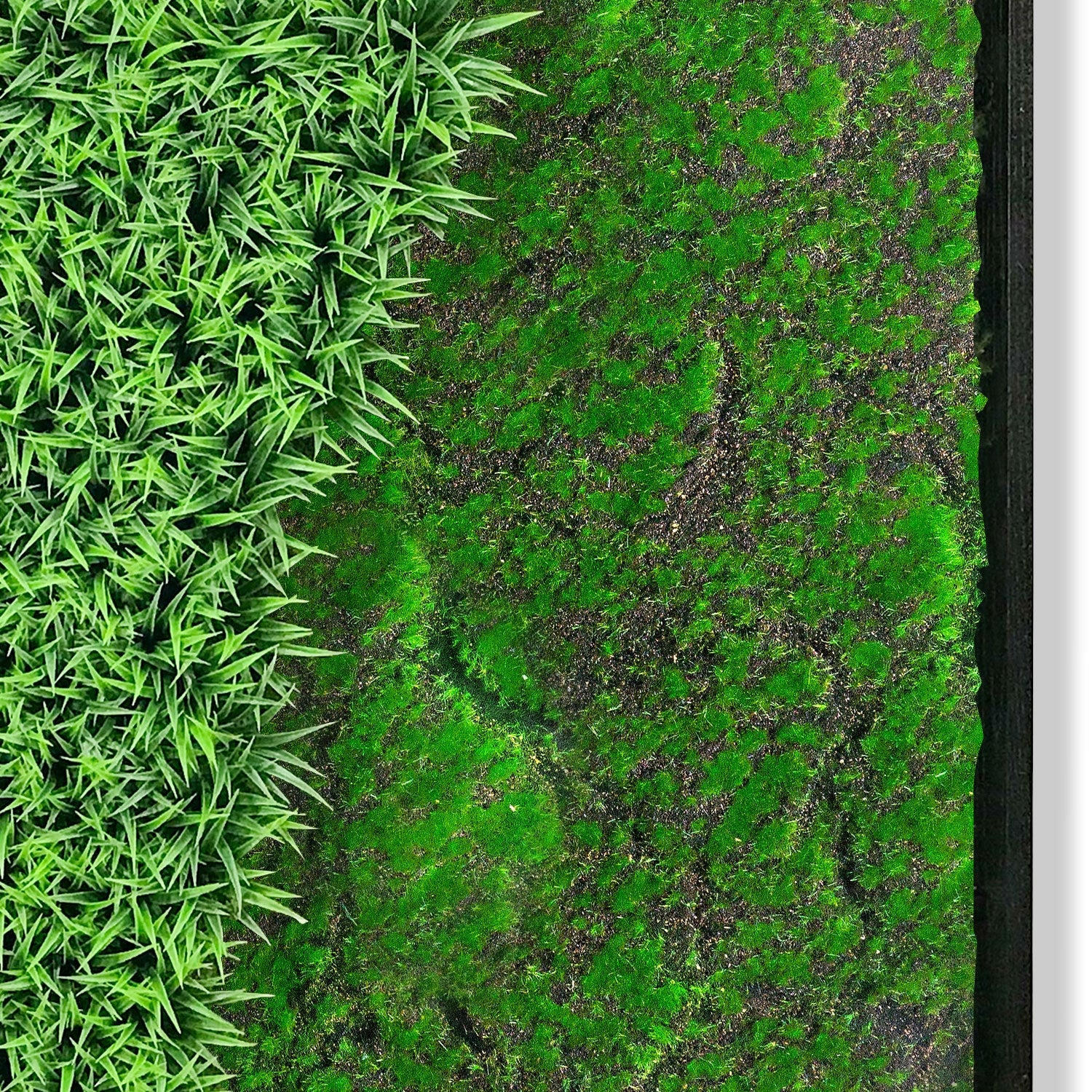 Green Wall, 'Wave Texture 3'