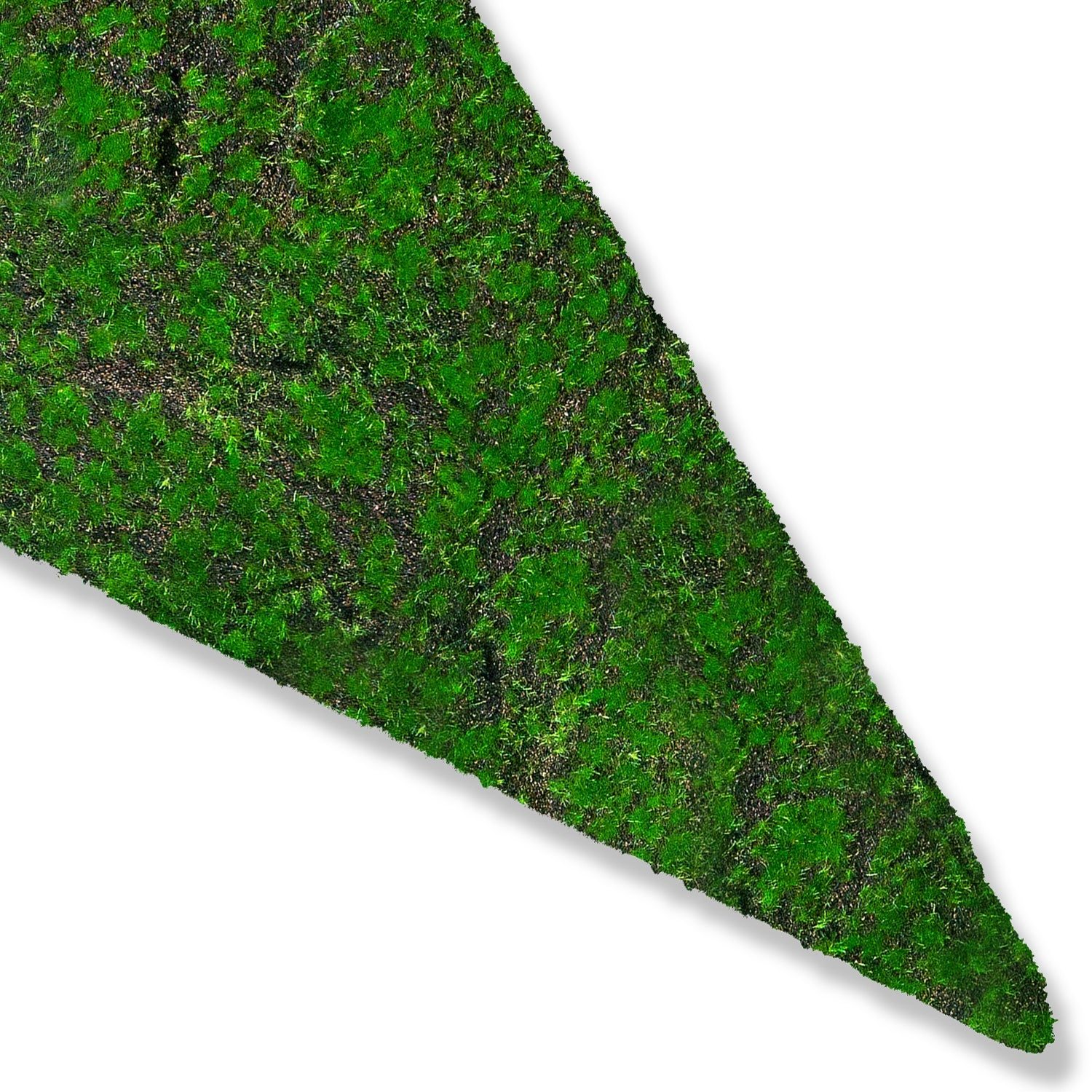 Green Wall Shape, Triangle, 'New Moss'