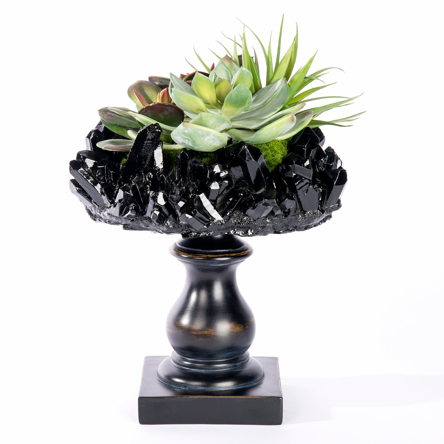 Succulent Mix on Crystal Pedestal