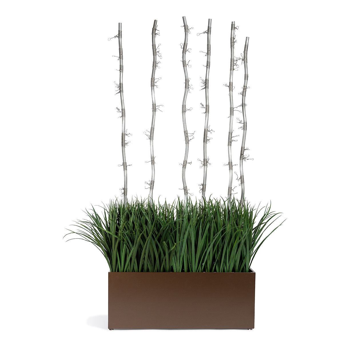 Grass: Liriope and Fantasy Branch in Bronze Black Rectangle