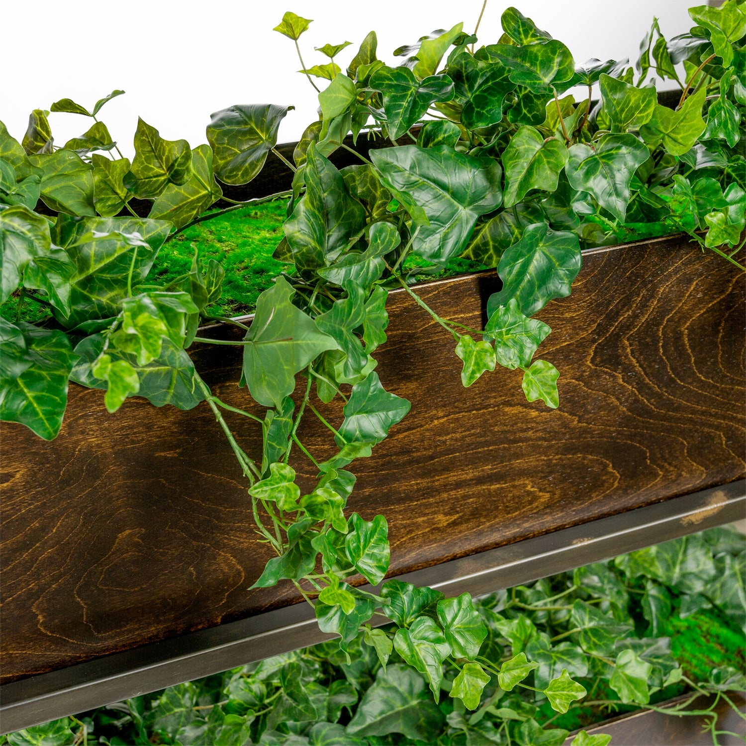 Green Wall, Ivy Vertical Garden x4