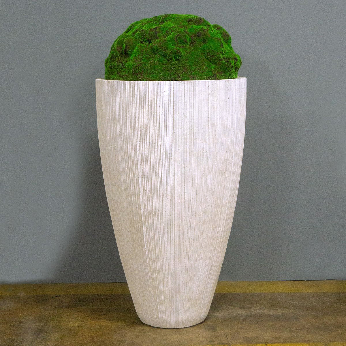 Moss Mound in Extra Large Linea Planter