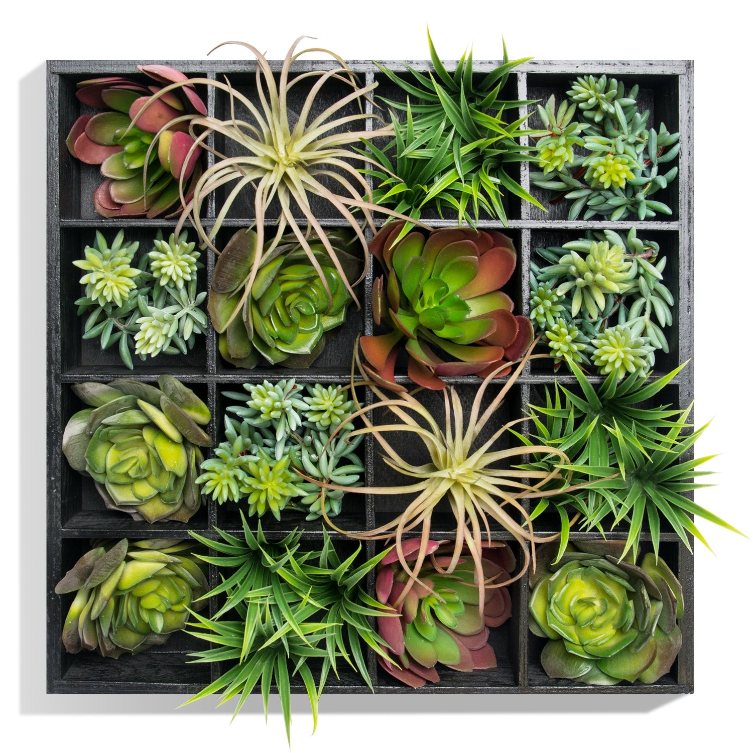 Green Wall, Pixelated Succulent, 16 compartments