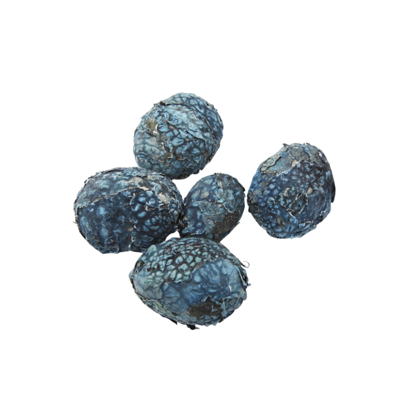 Decorative Filler, Lichen Ball Pod, Blue, Set/ 6