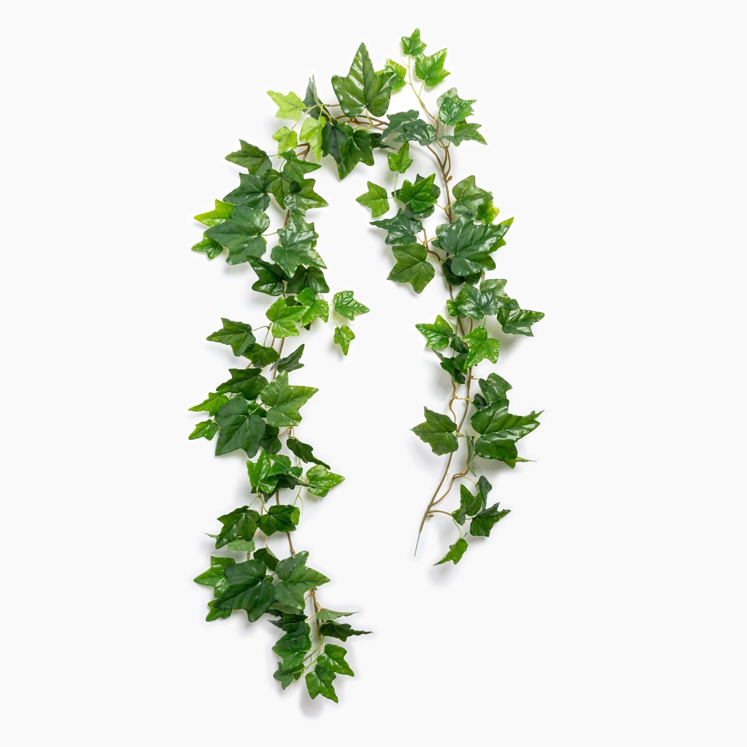 "Outdoor Ivy Garland, 66""L"