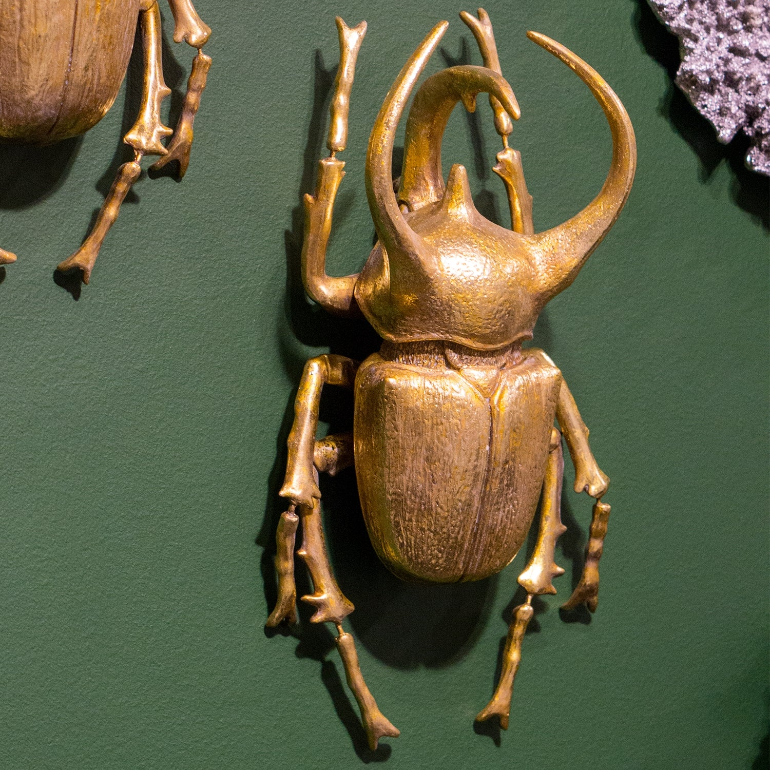 Beetle 'Rhino' Wall Art