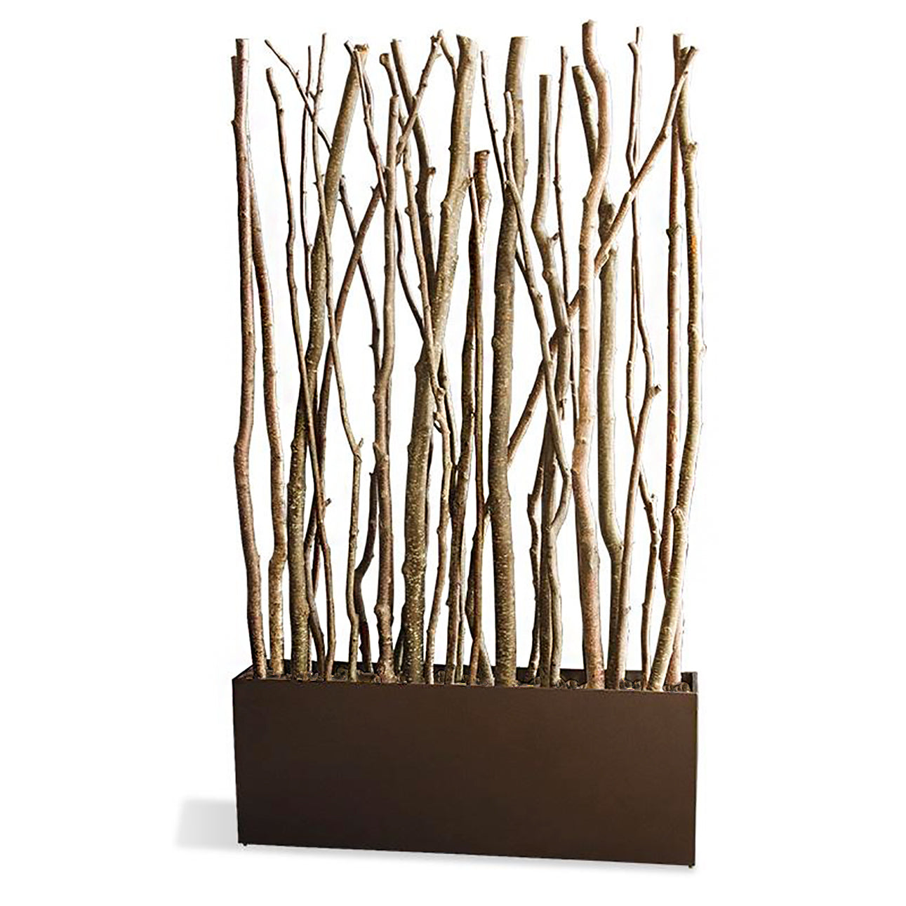 Alder Poles in Rectangle Planter