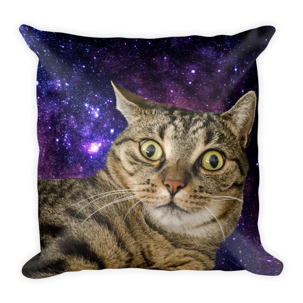Shocked Space Cat Premium Pillow