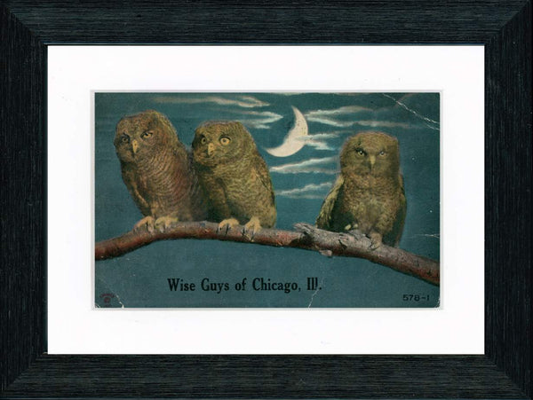 Vintage Postcard Front - Wise Guys of Chicago—Owls in Moonlight
