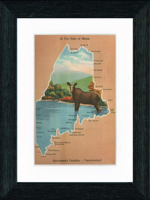 Vintage Postcard Front - Maine Moose & State Map