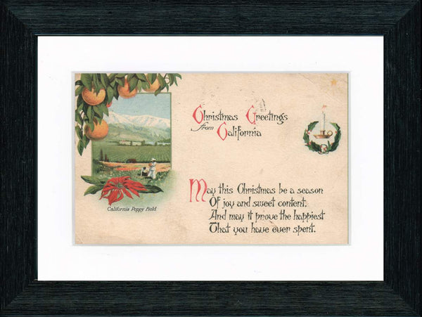 Vintage Postcard Front - California Christmas Poppies