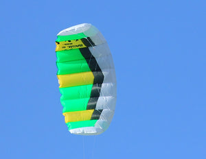 Green Basic Dual Line Traction Kite Details