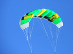 Flying Green Basic Dual Line Traction Kite