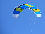 Blue Flying Basic Dual Line Traction Kite