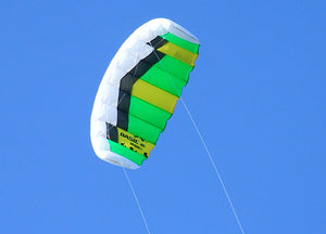 Flying Green Basic Dual Line Traction Kite Sports Kite