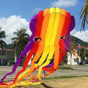 Colorful 49FCt 3D Tube-Shaped Parafoil Flame Octopus Kite
