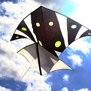 Super Light Indoor Floating Delta Kite
