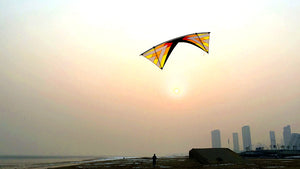 Flying Windrider Ⅱ Ⅹ Quad Line Stunt Kite