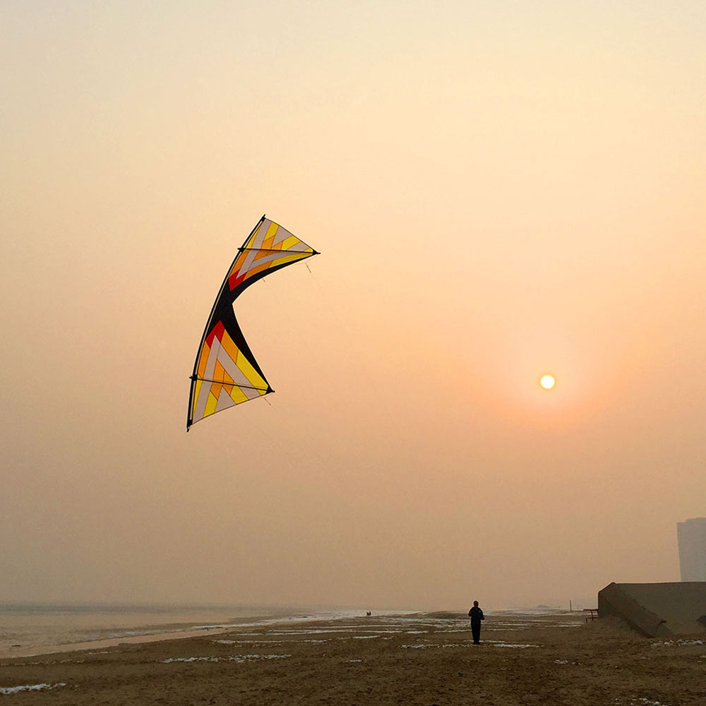 Professional Windrider Ⅱ Ⅹ Quad Line Stunt Kite