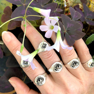 hand showcasing silver floral signet rings under pink Oxalis flowers and purple clovers