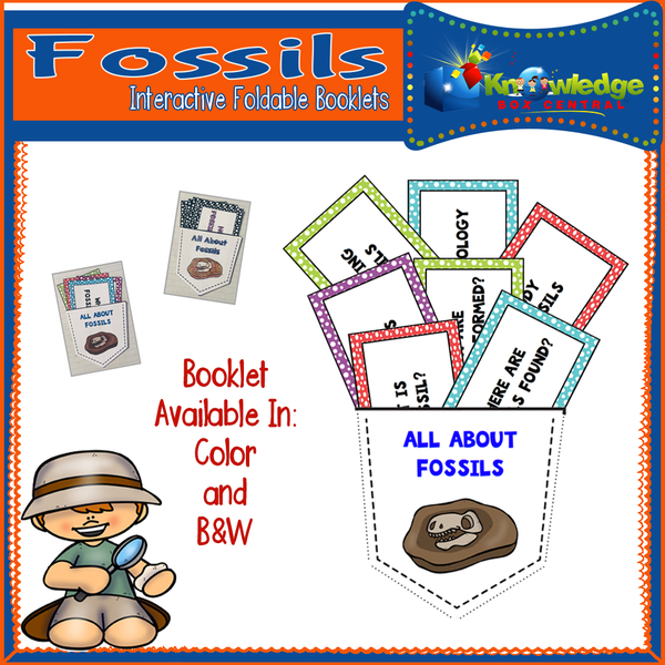 Fossils Interactive Foldable Booklets