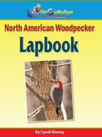 North American Woodpeckers Lapbook