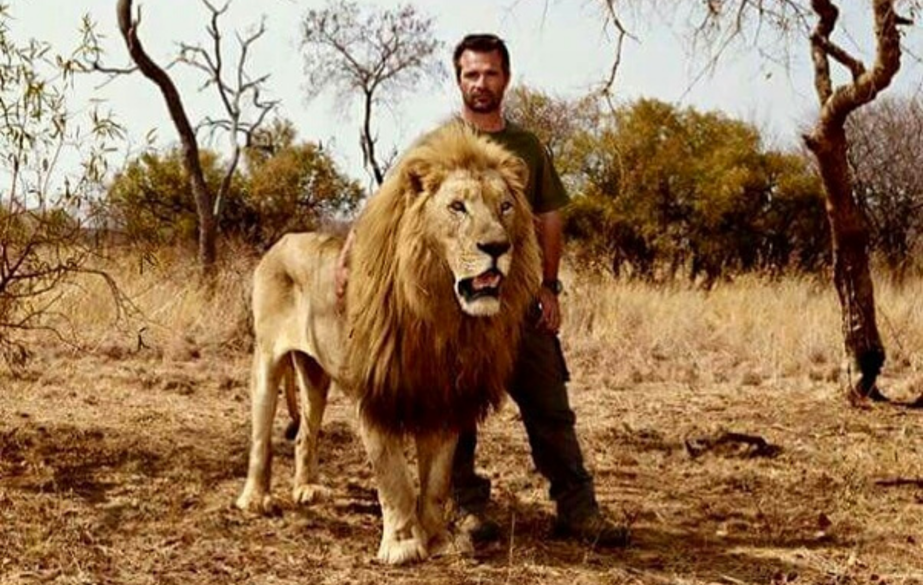 Kevin Richardson et un lion.