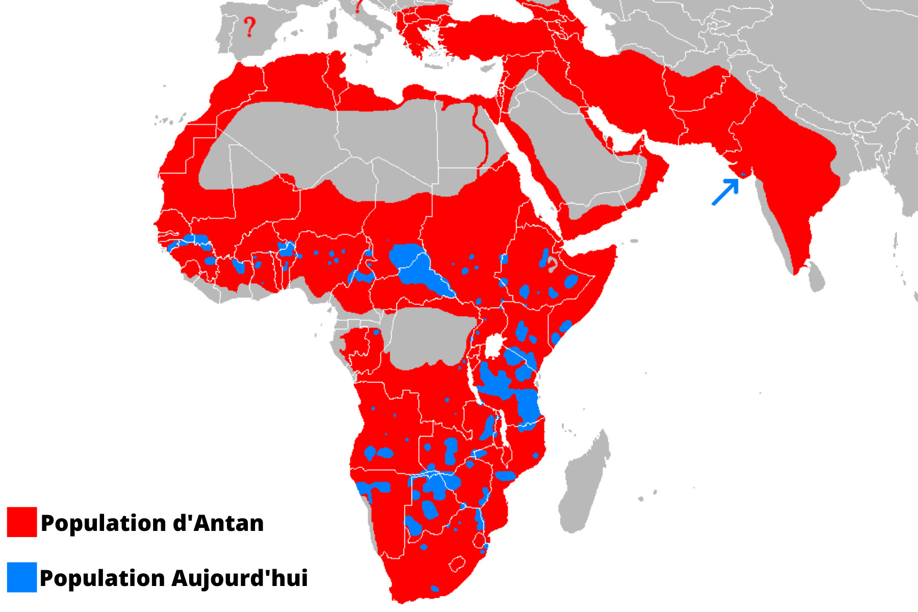 Carte population lion.