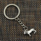 Porte Clés Argent Lion photo