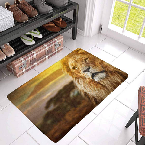 Tapis lion en couleurs.