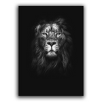 Poster mural lion.