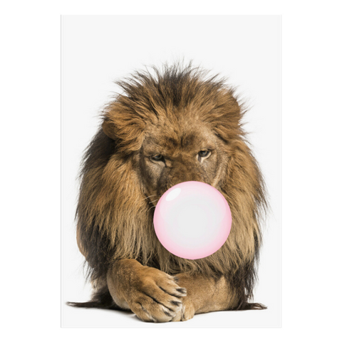 Poster lion et son chewing-gum.