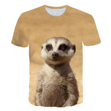 T-Shirt Roi Lion Timon | Lion Royaume