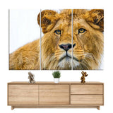 Tableau Lion Redoutable | Lion Royaume
